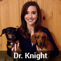 Dr. Knight